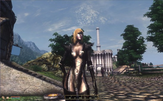 A modded version of Oblivion from my own game (for PC)